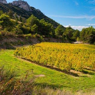 Excential Côtes du Rhône, Domaine Sarrelon 2013, biologisch