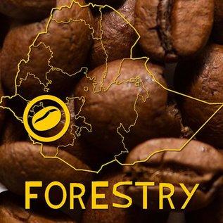 Harar Coffee Forestry koffiebonen