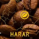 Harar Coffee Harar Longberry Kaffeebohnen
