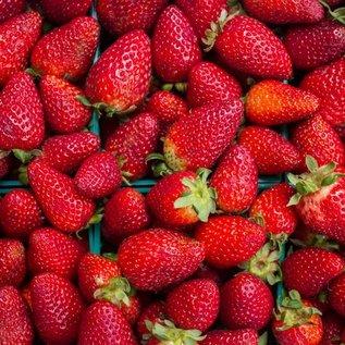 Fructal Aardbeiensap - Sok od Jagoda