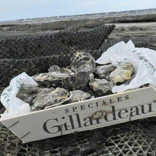 Huître Spéciale Gillardeau - no. 4-12 stuks per mandje
