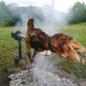 Bio Goat Meat Organic goat goat (whole)