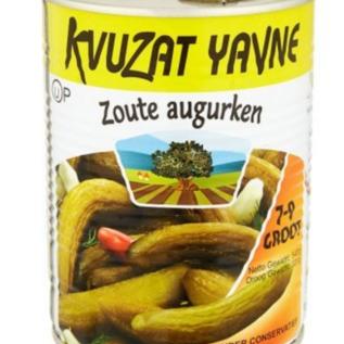 Kvuzat Yavne Salty pickles