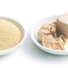 Bruggemans Baker's yeast (fresh)