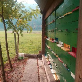 Čebelarstvo Miha Tekavčič Sloveense bloemenhoning/Cvetlični med
