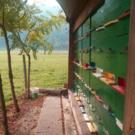 Čebelarstvo Miha Tekavčič Sloveense lindenhoning