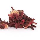 Ozem Hibiscus flowers - premium