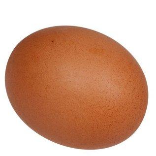 Eko-ei 10 biologischer eier