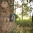 ✅ HD wildlife-camera | 16 MP | 5 MP CMOS