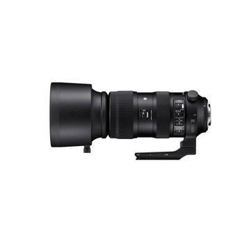 SIGMA SIGMA 60-600mm f/4.5-6.3 DG OS HSM Sports