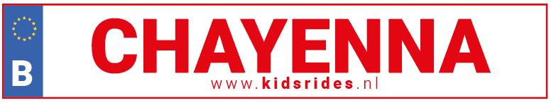 Kentekensticker gratis bij aankoop van een Een elektrische kinderauto 2 persoons kopen? Kidsrides biedt een ruime keuze elektrische kinderauto 2 persoons aan.