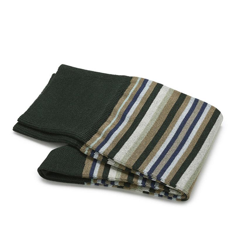 Groene streep sokken | Carlo Lanza
