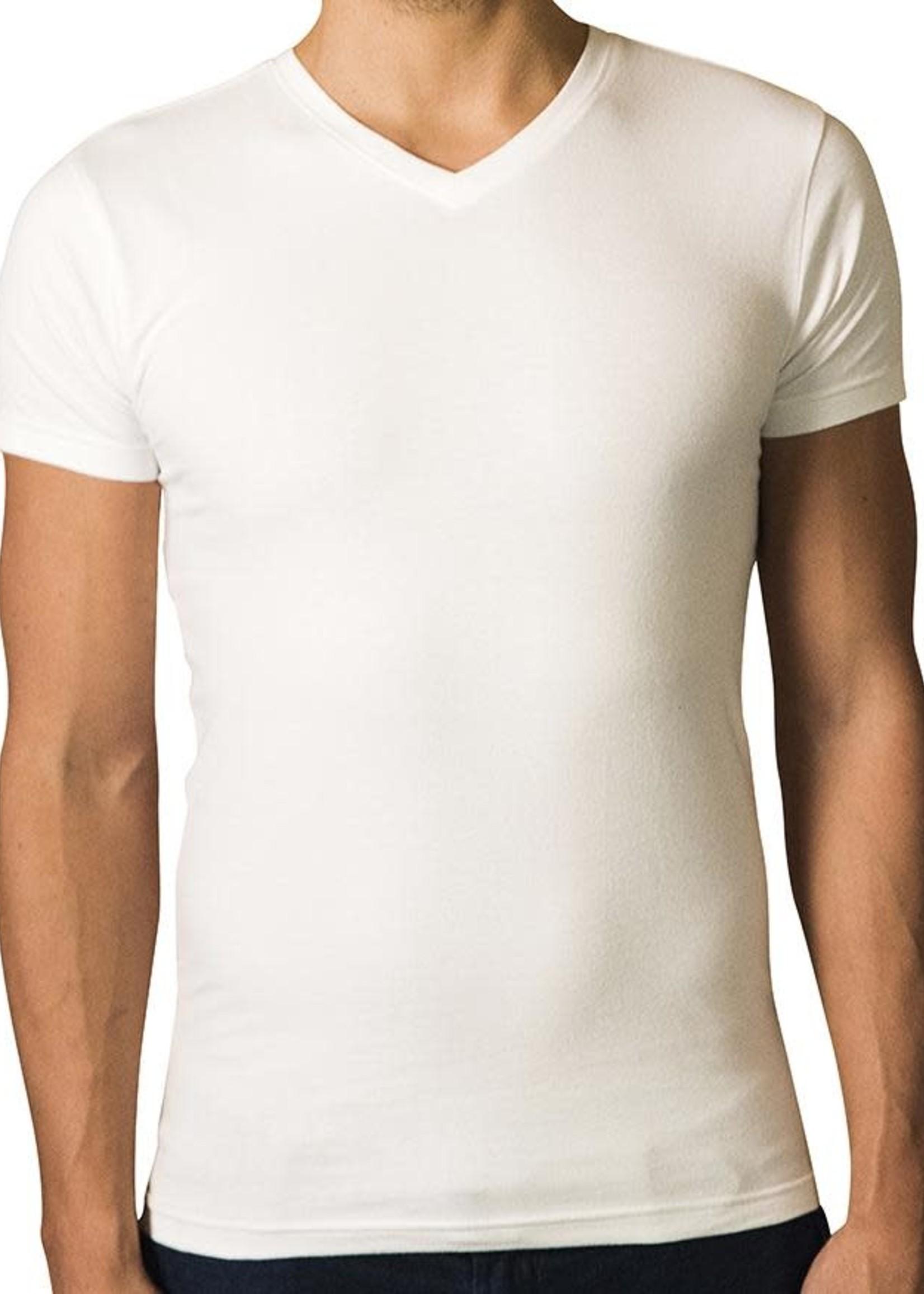The Driftwood Tales The Driftwood Tales - T-shirt Basic - Biologisch katoen - wit - V - hals