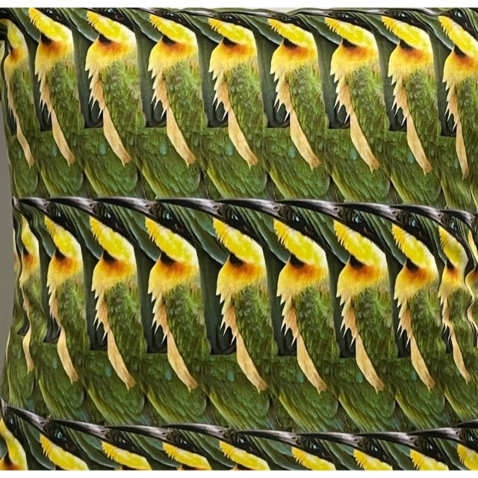 Dividere Dividere kussen Tripple  Bee Eater 55 x 55 cm