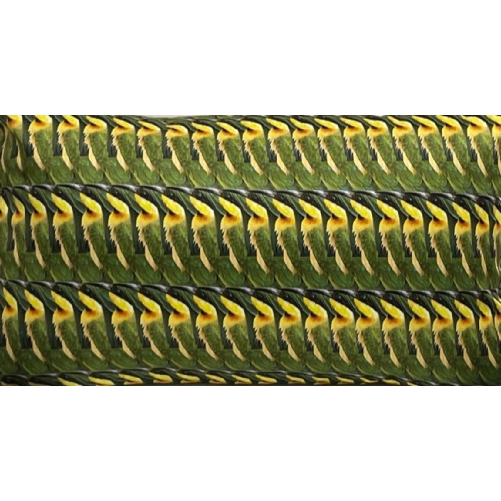 Dividere kussen Bee Eater 58 x 38 cm