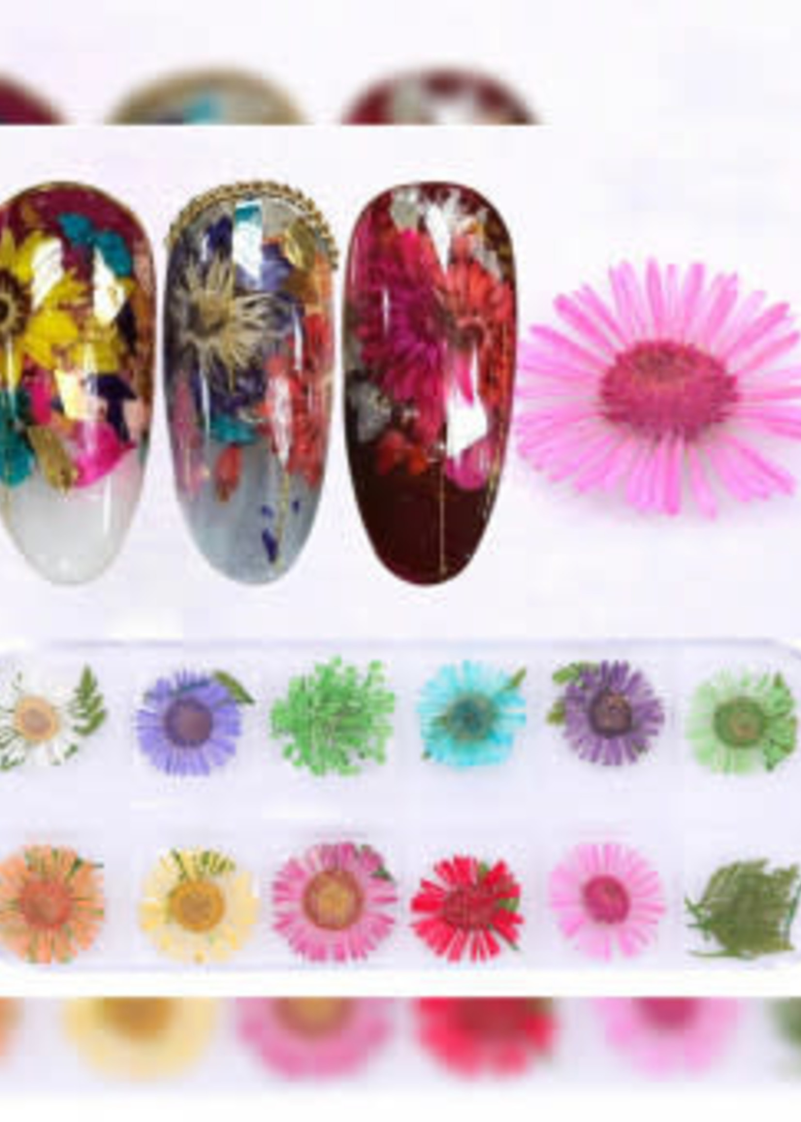 Pallet met gedroogde bloemen