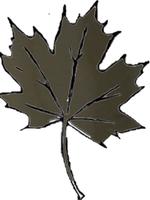 La Ross Royal Oak