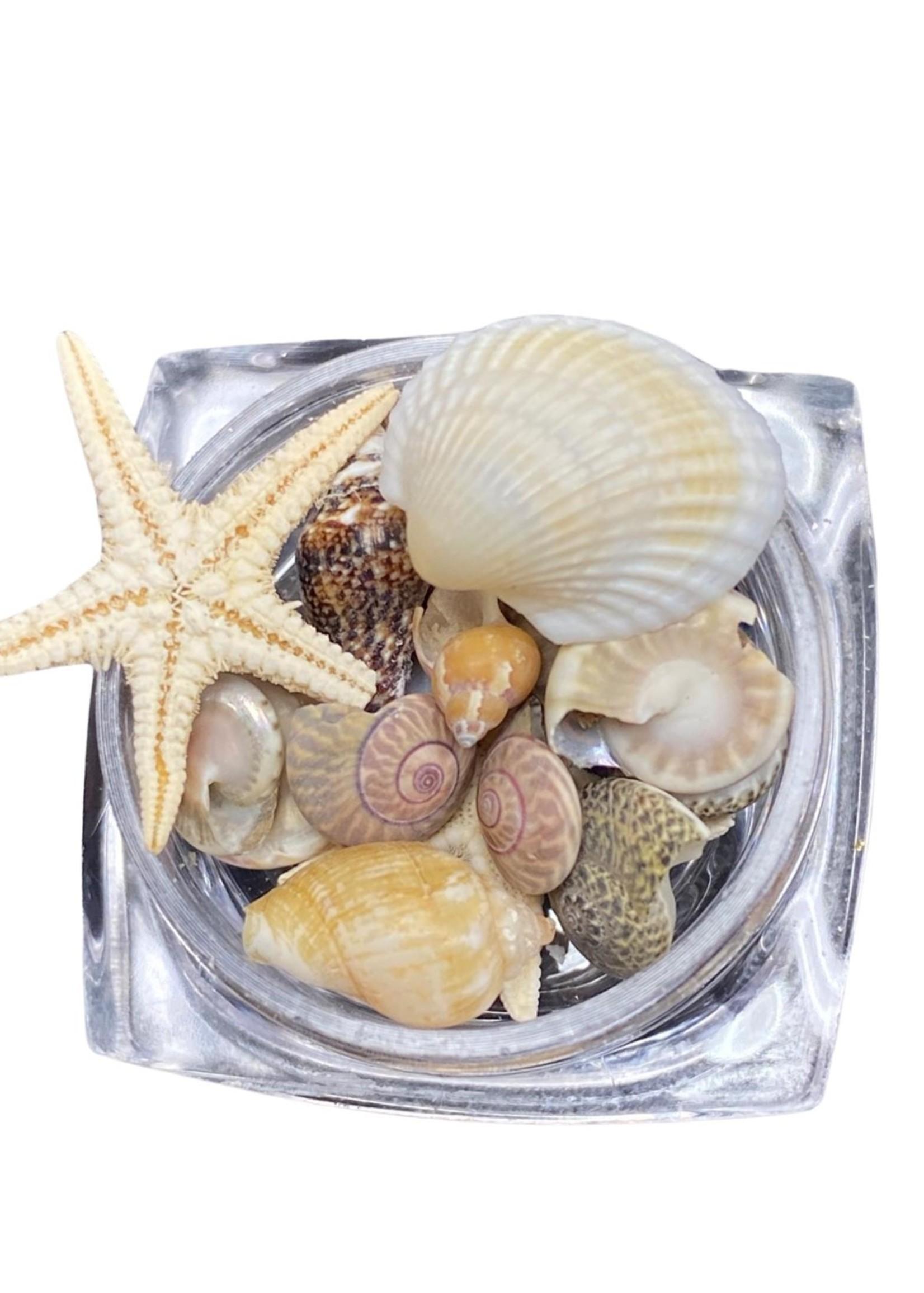 Sea Inlay pieces