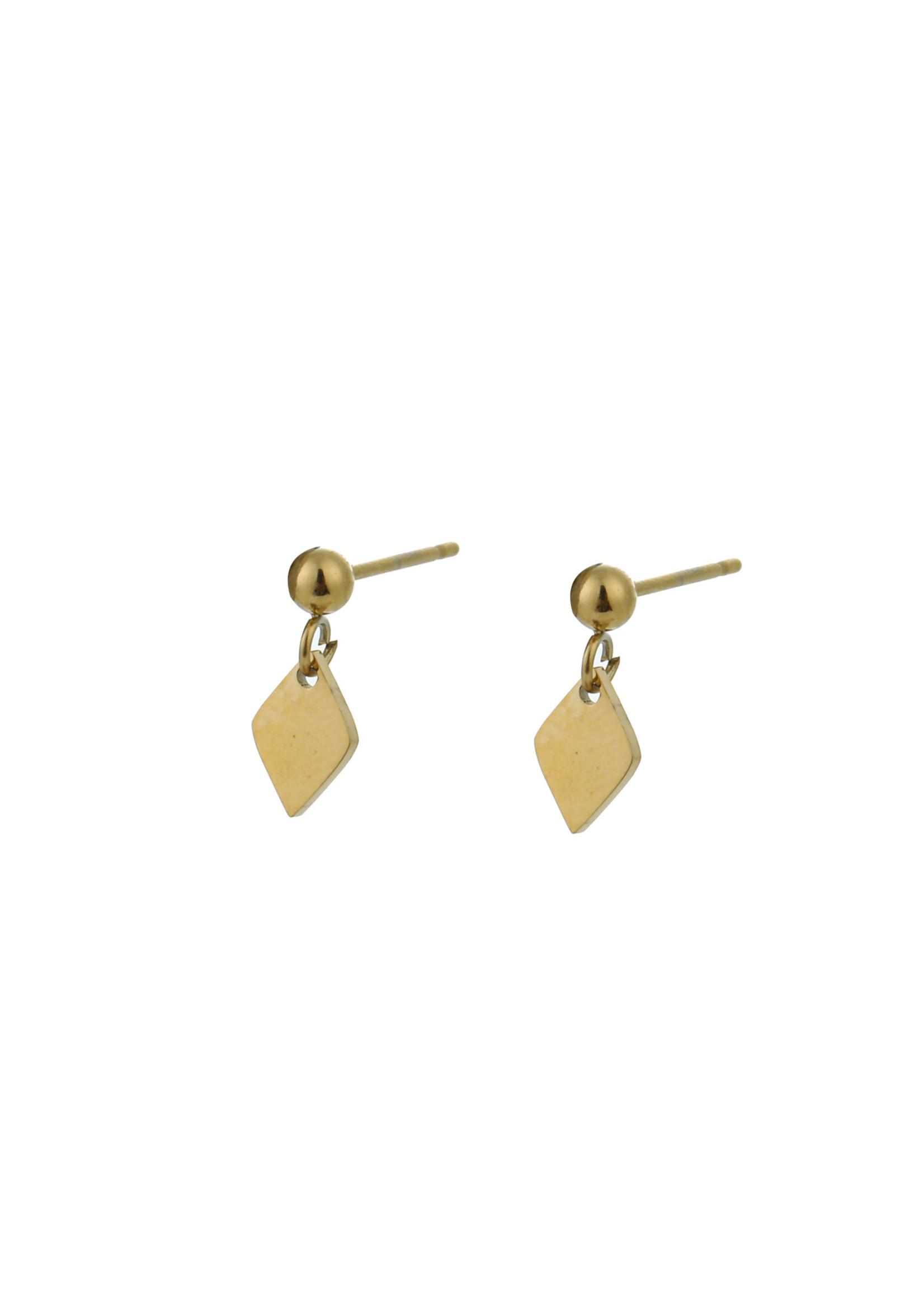 Oorbel goud ruit E0903-2
