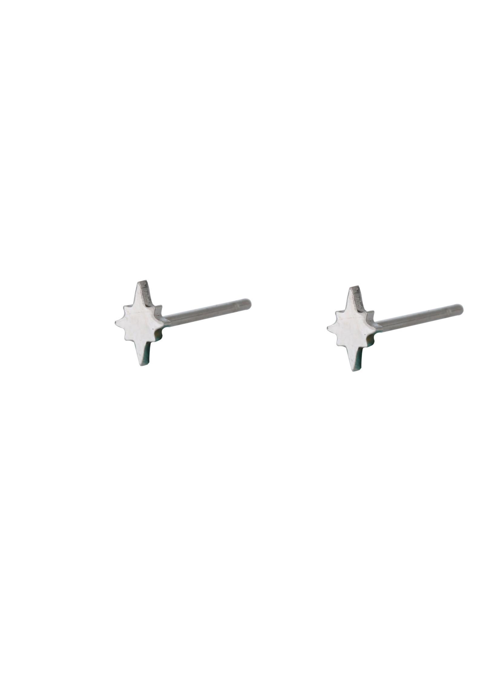 Oorbel zilver poolster E9879-1