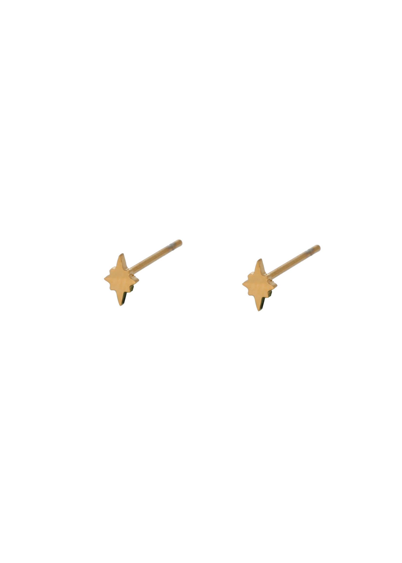 Oorbel goud poolster E9879-2