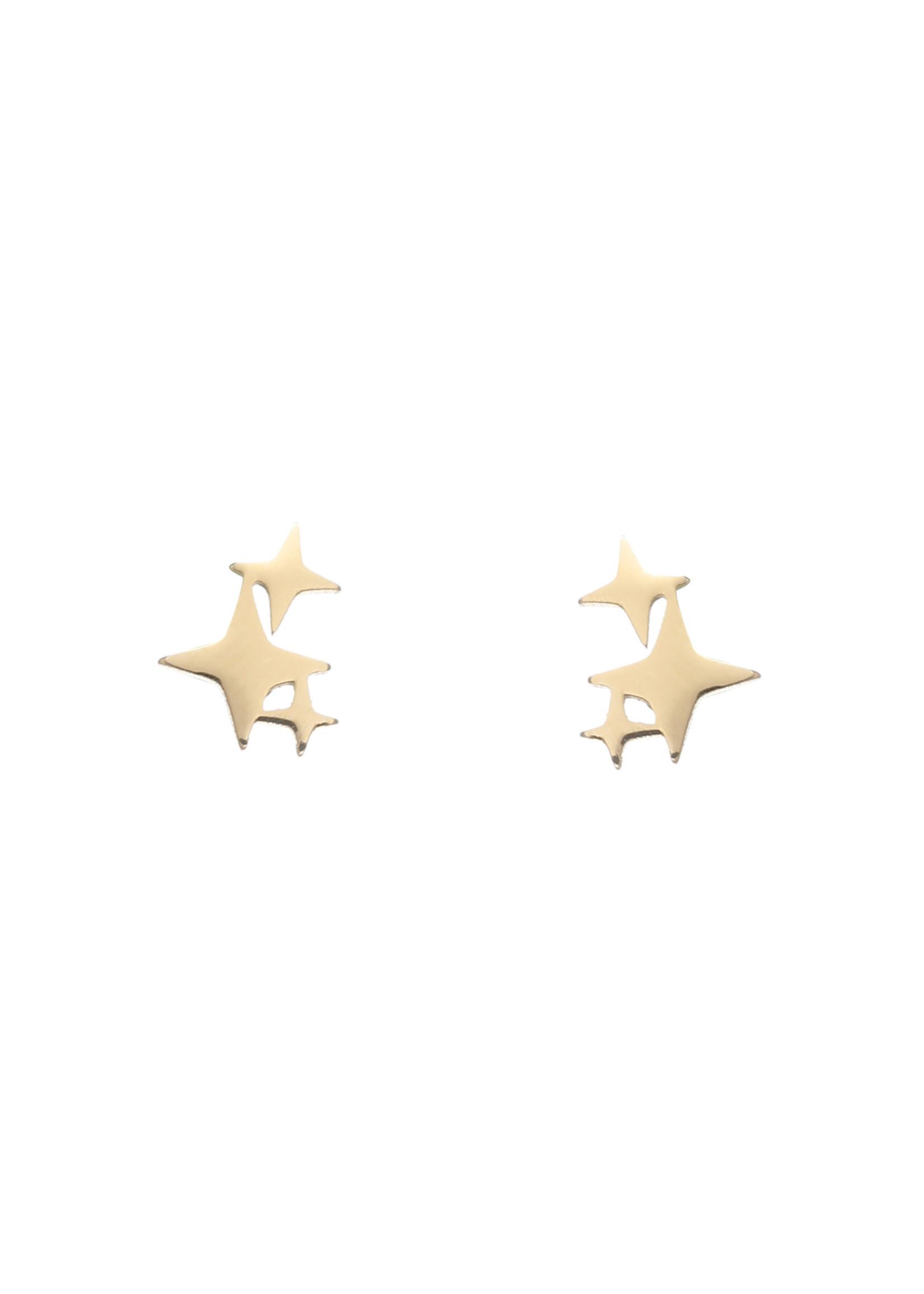 Oorbel goud poolsterren E1751-2