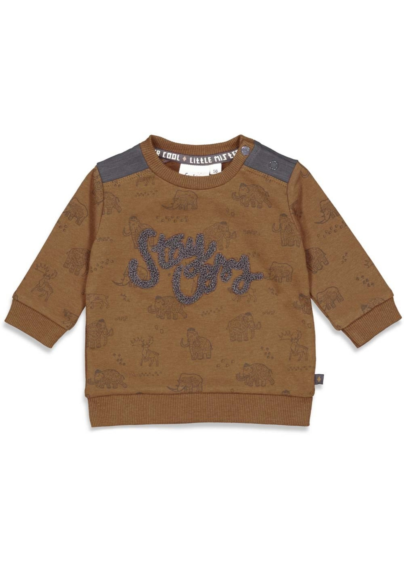 Feetje Sweater AOP - Cool Adventure