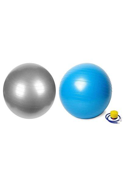 Fitnessbal - Vector X Swiss