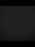 Popeline - Zwart