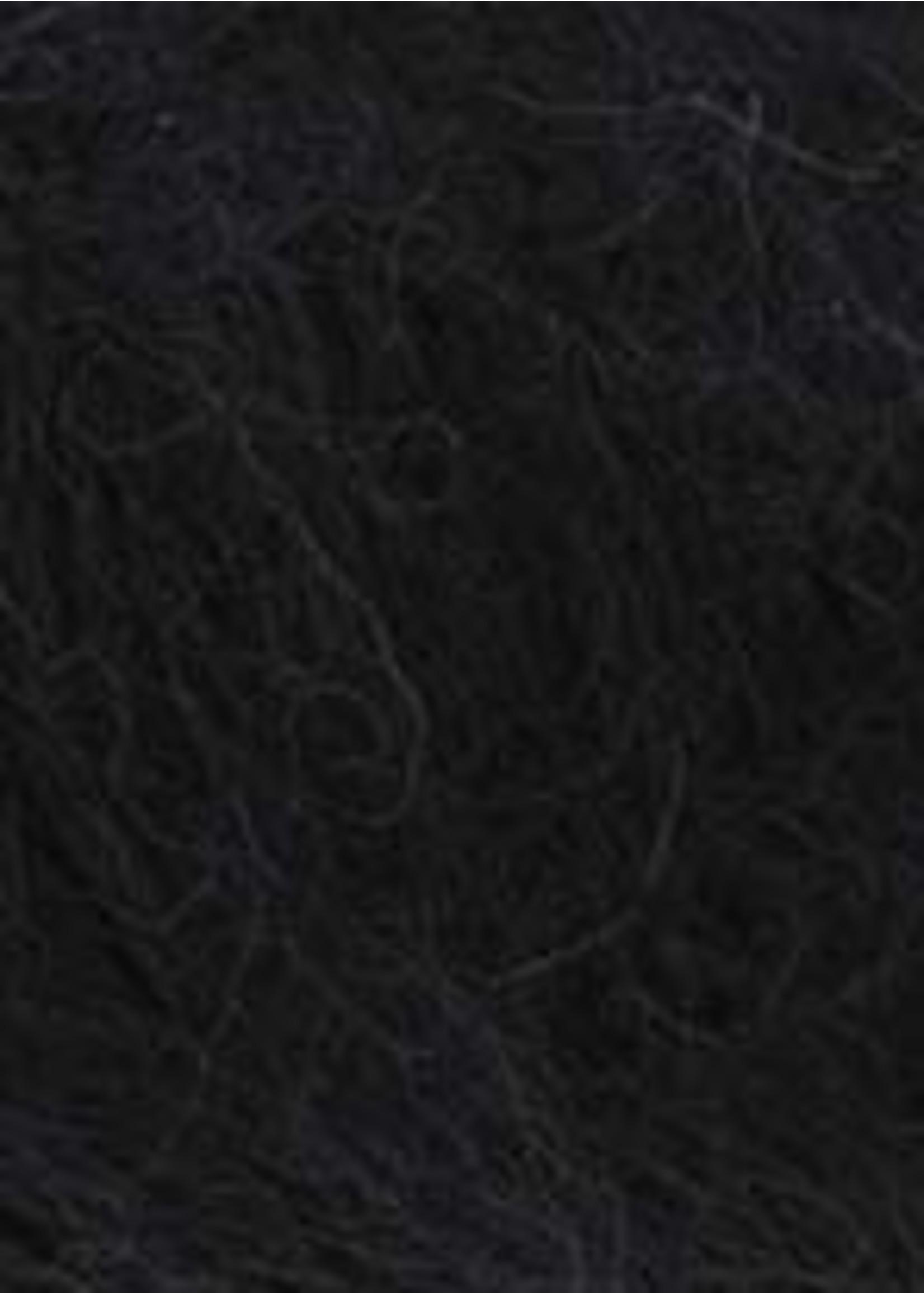 WoolAddicts Honor - 0004