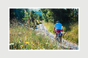 Wild Things Publishing Limited Book - Lost Lanes West: 36 Glorious bike rides in Devon, Cornwall, Dorset, Somerset and Wiltshire by Jack Thurston