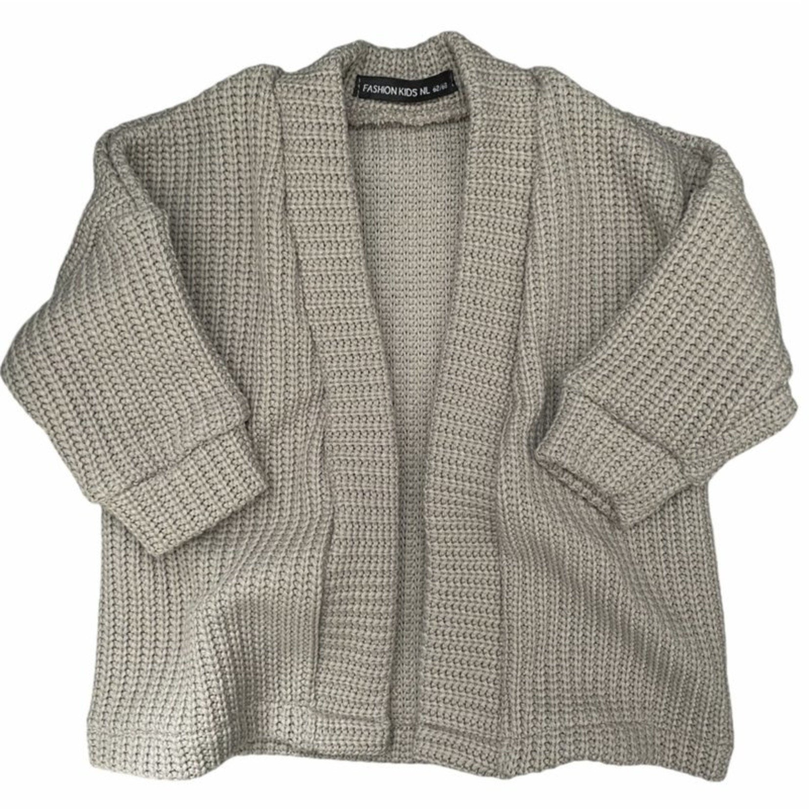 Fashion Kids  Knit vest grijs