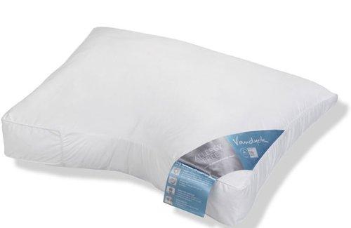 Vandyck Allergy Free Medium (60x70cm) Kussen