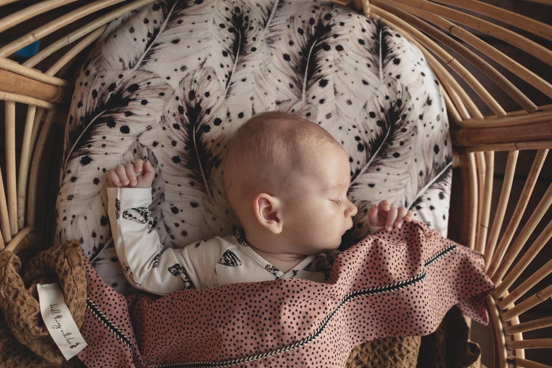 Mies & Co wieg laken cozy dots redwood-3