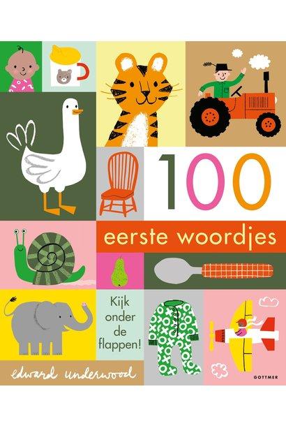 Boek- 100 eerste woordjes