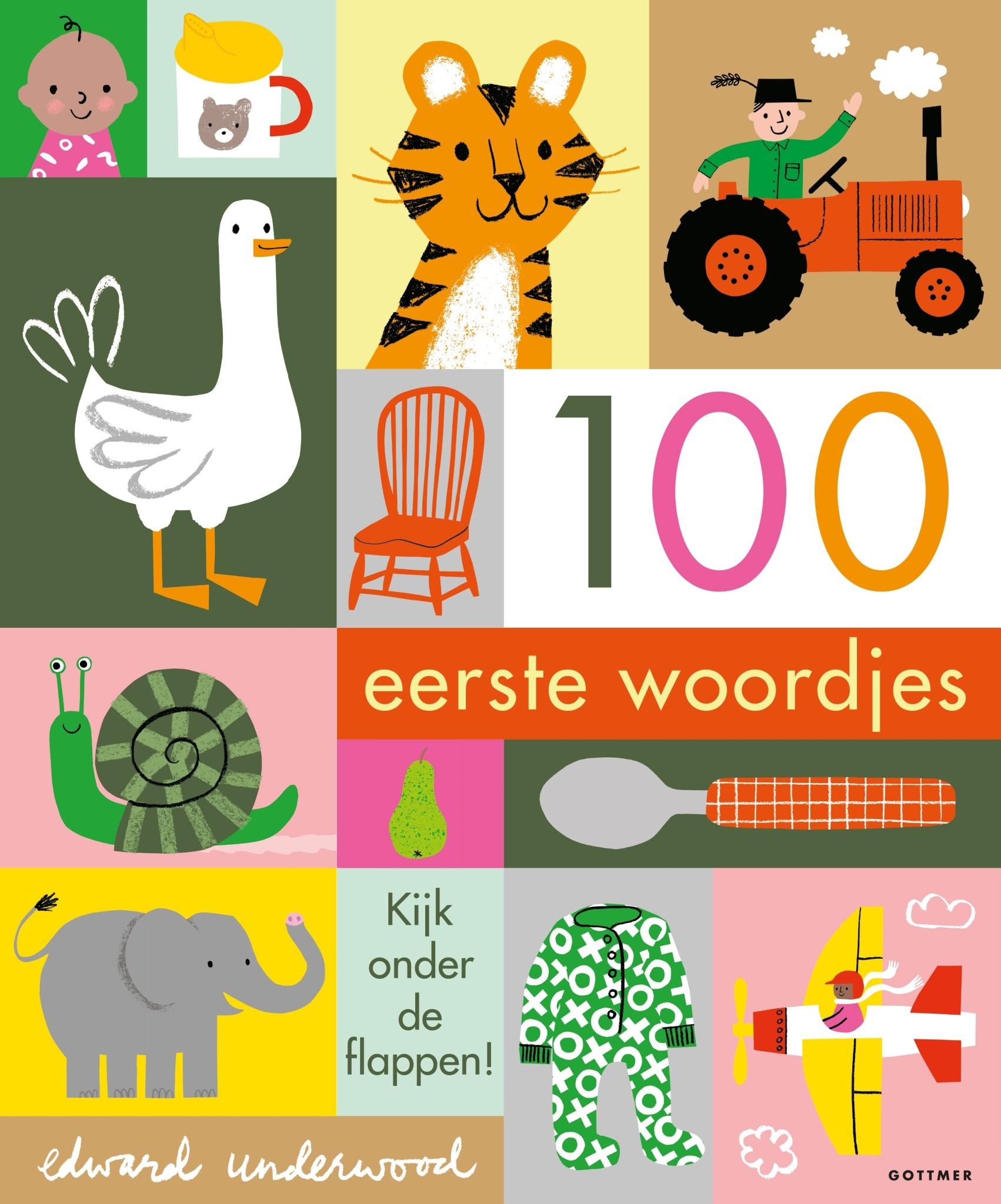 Boek- 100 eerste woordjes-1