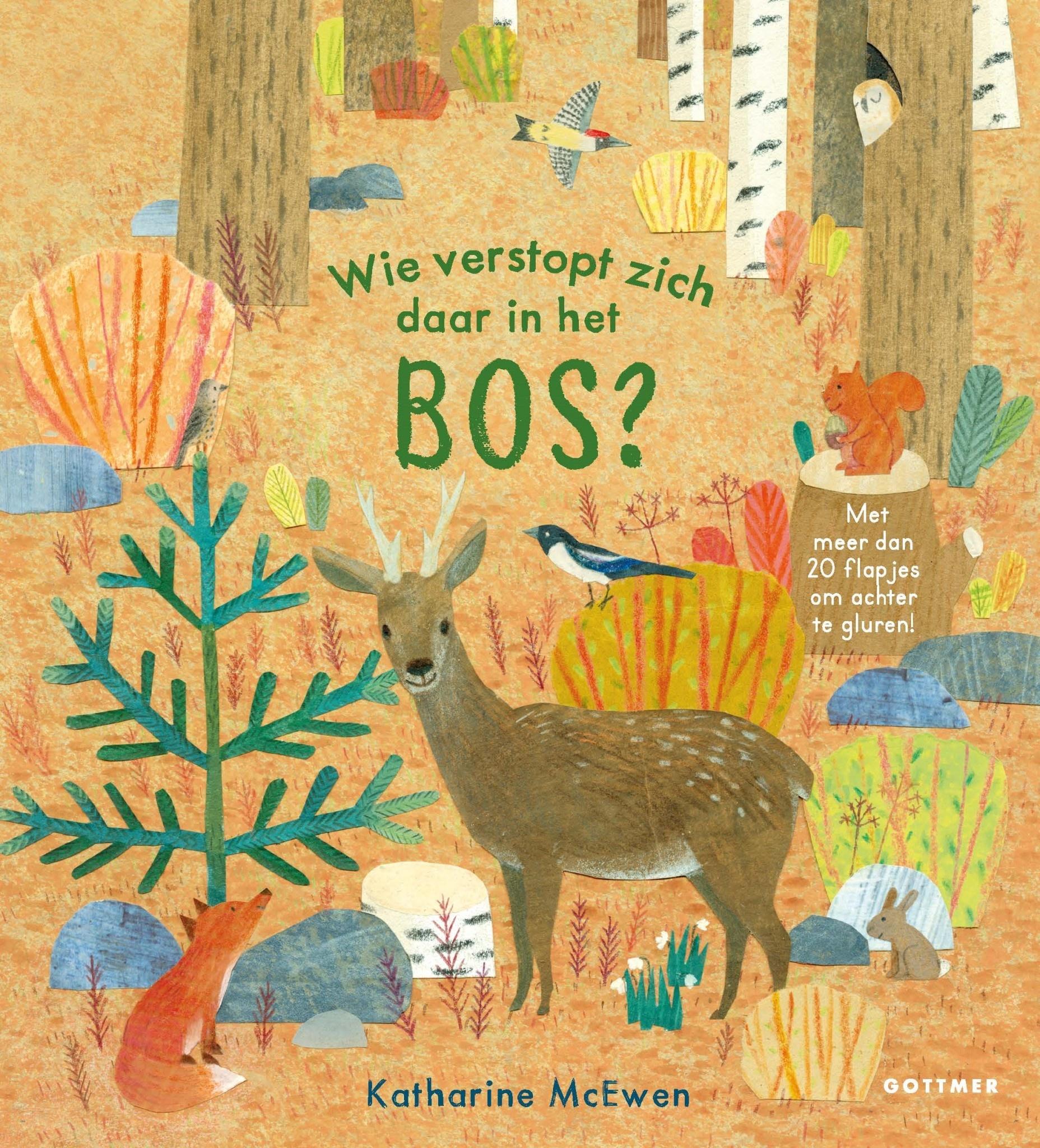 Boek- wie verstopt zich daar in het bos?-1