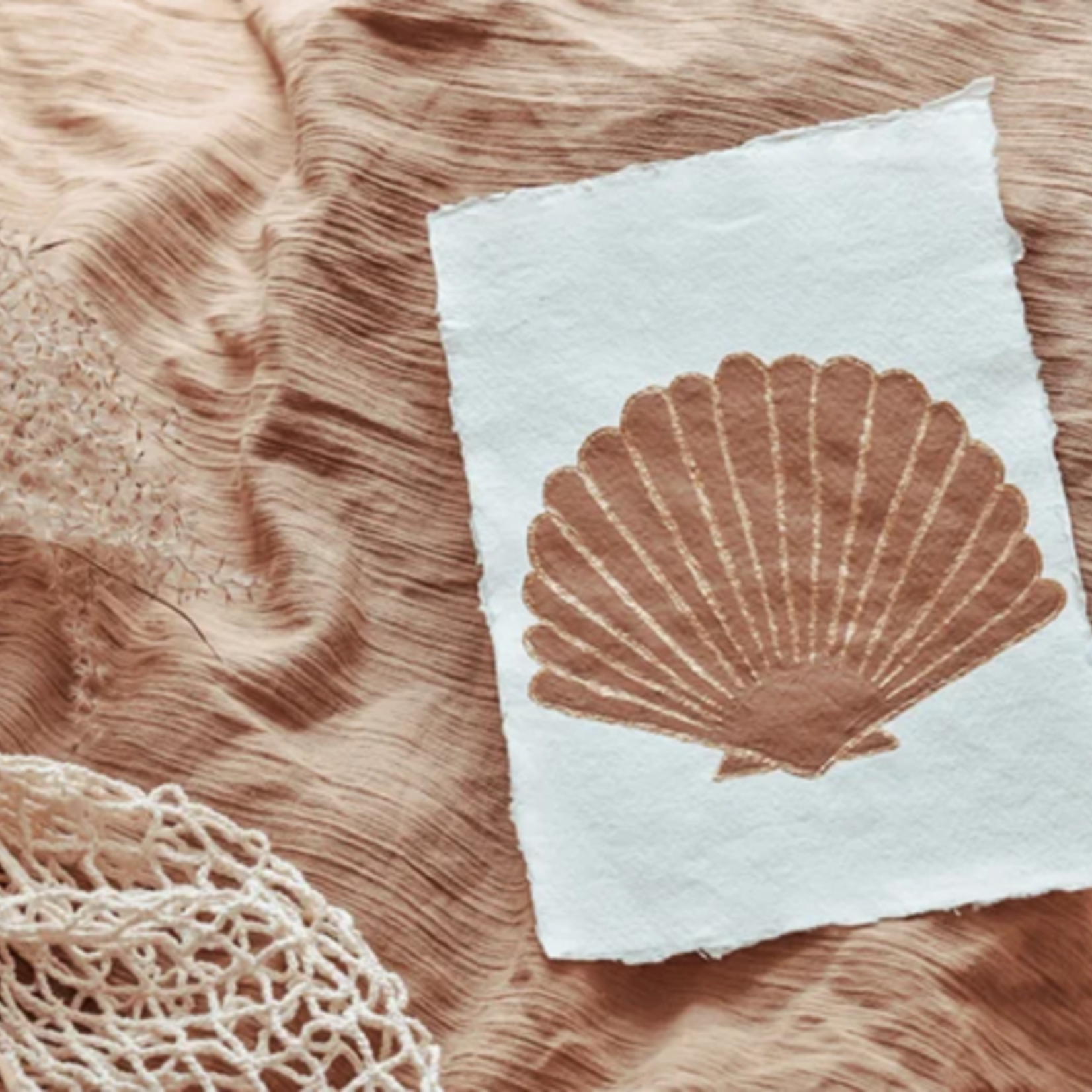 Cotton Design Cotton Design   Seashell Art