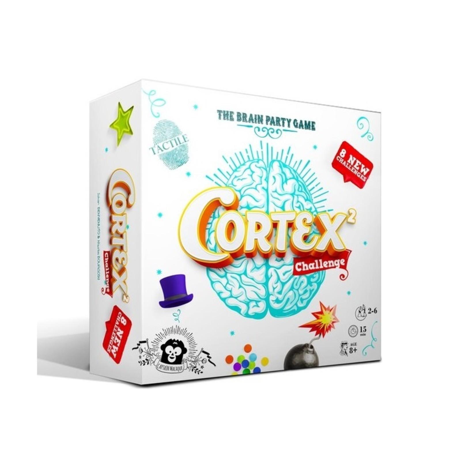 Zygomatic Cortex Challenge 2