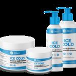 Révvi Ice Cold 250 ml (fles)