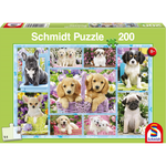 999 Games Puppies, 200 stukjes