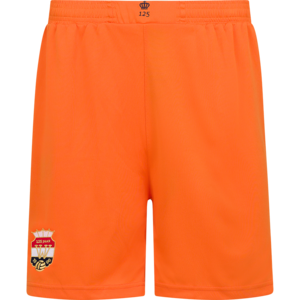 Willem II Uitshort Oranje 2021-2022 - Mini