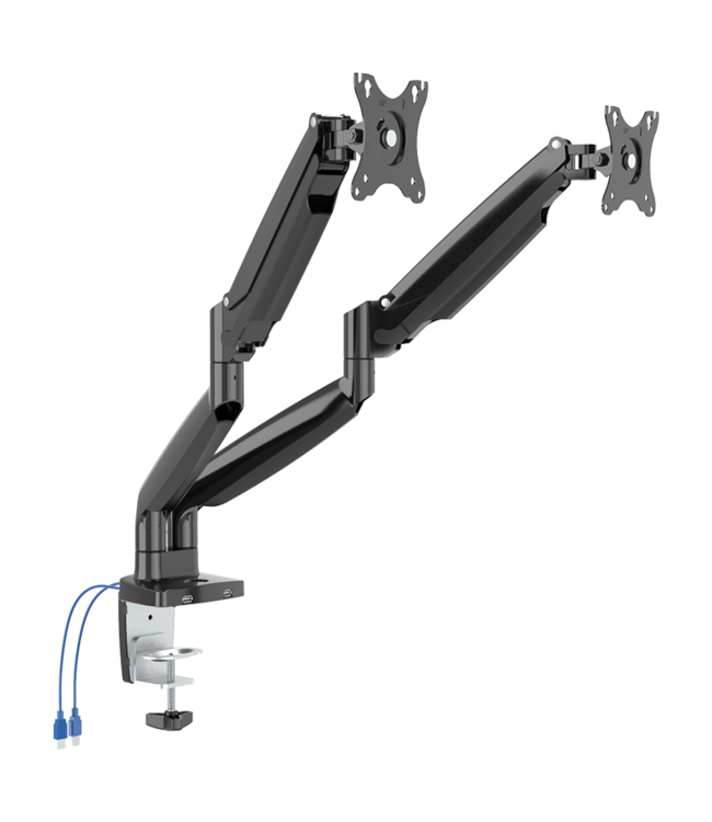 DQ Wall-Support monitor arm Lineo double USB black