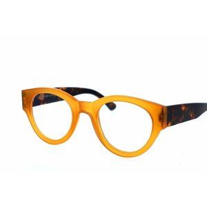Arnold Booden bril 3734 kleur 75 121