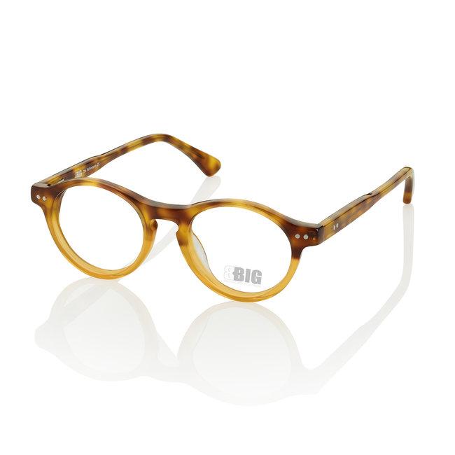 BBIG 220 - YellowHavana/TransparantYellow-420