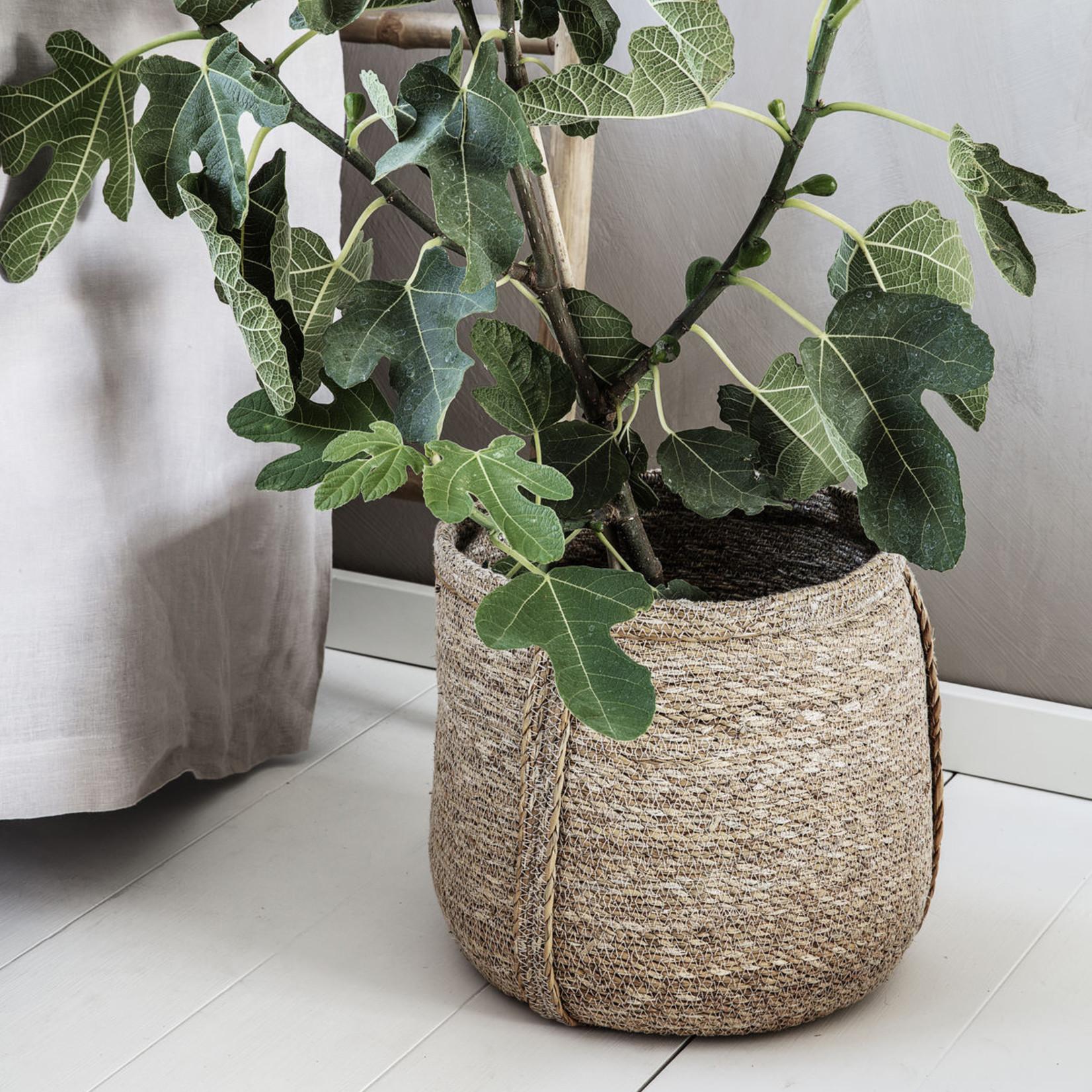 House Doctor House Doctor, Basket Plant, Set of 2
