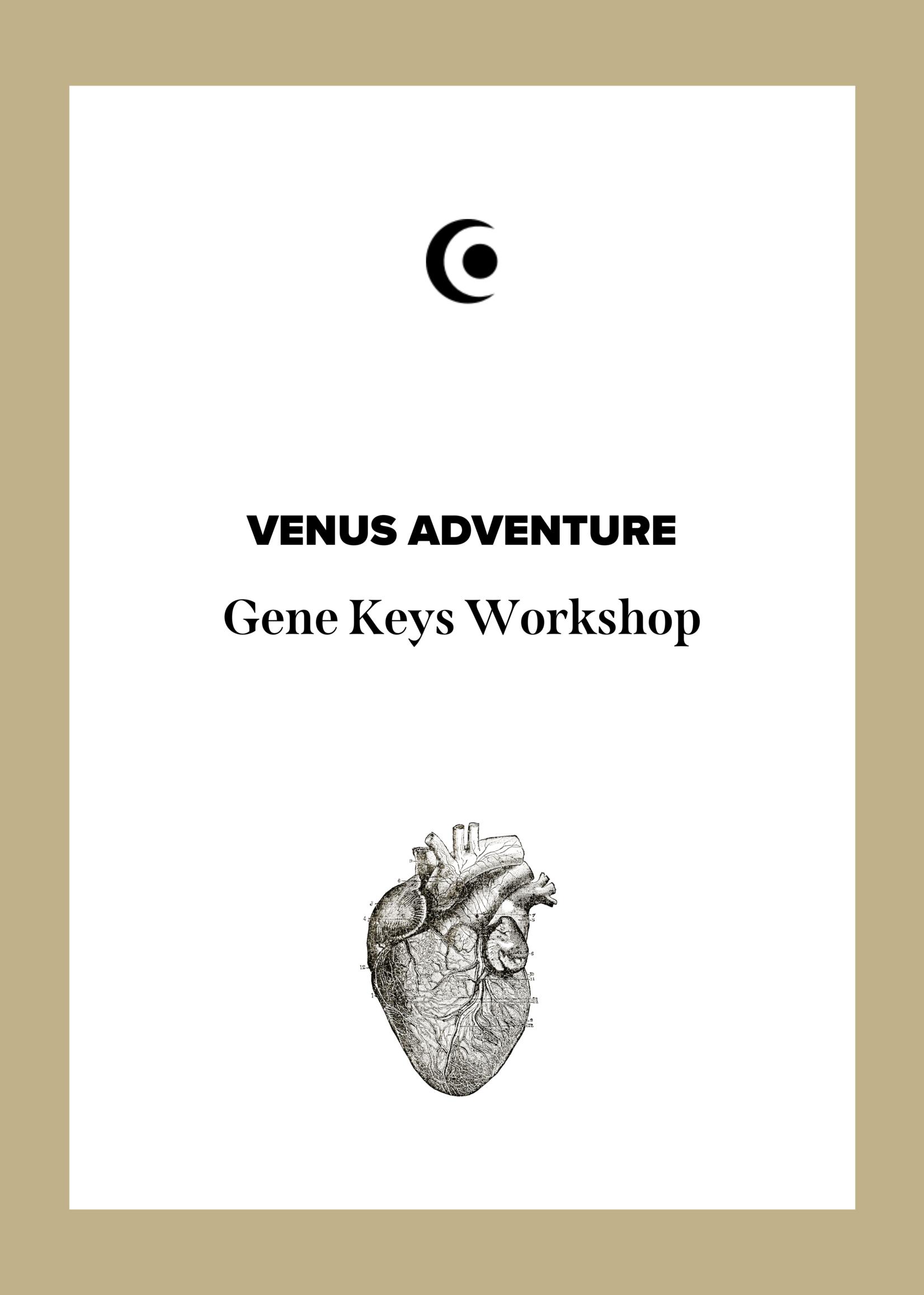 VENUS ADVENTURES Workshop