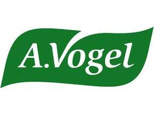 Dr. Vogel