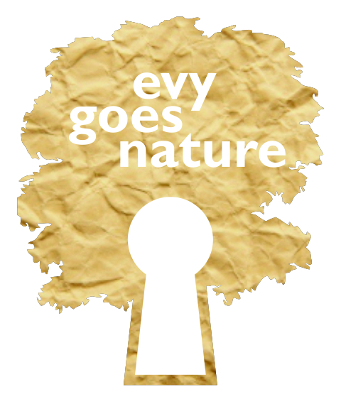 Evygoesnature - Webshop