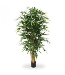 Bamboe Deluxe 180cm